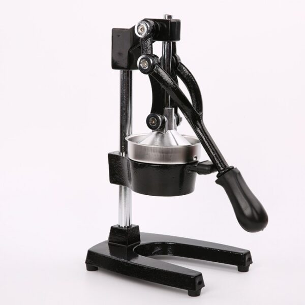 manual juicer hand fruit buy online iBuy al