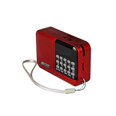 nontaus s61 portable fm radio card speaker blerje online